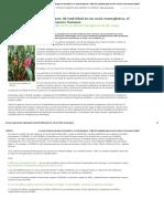 Un nuevo estudio revela signos de toxicidad en un maíz transgénico, el Mon 863, aprobado para consumo humano _ Greenpeace España.pdf