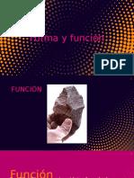 forma y funcion [Autoguardado]