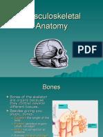 10 Musculoskeletal Anatomy DL 6 des