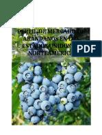 PERFIL_DE_MERCADO_DE_ARANDANOS_EN_LOS_ES (1)-converted (1)