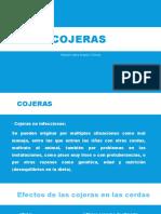 Cojeras