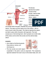 Anatomy of Reproductive Sys