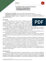 PROYECTO TRANSVERSAL DE ABORDAJE DE LA ESI.pdf