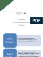 Cultura - introducere