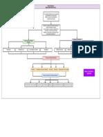 Mapa de Conceptos - Material Didáctico