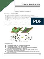 teste e soluções CN.docx