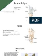 Posiciones radiológicas pie