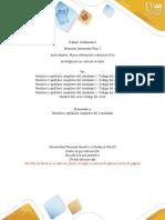 Anexo 3 - 2 formato de entrega