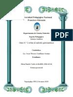 Guia 2 de analitica Teg 2020 1P.docx