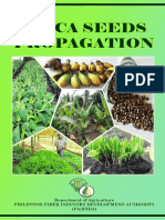 abaca seed propagationbooklet