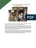 EFCIENCIA PRODUCTIVA Y ECONOMICA EN BUFALAS