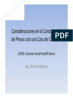 cfrd.pdf