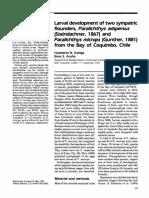 Zuñiga  Acuña 1992 (Paralichthys) (1).pdf