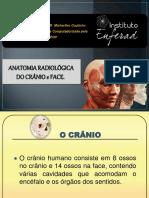 Curso de anatomia do crânio e face