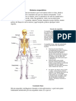 39554343-Sistema-esqueletico.doc