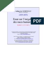 Essai Inegalite Races 1