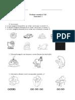 evaluare_sumativa_clr_sem_i.doc