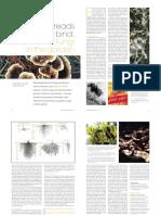 Symbiotic Fungi in the Garden.pdf
