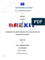 Brexit Project Report