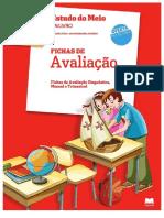 _Fichas de Avaliação Estudo do Meio Gailivro (3) (1).pdf
