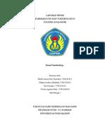 LAPORAN RESMI ANALGESIK.docx