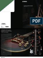 Electric Guitar-Basses Catalog 2009