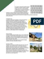 5 ciencia maya.docx