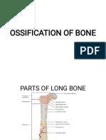 OSSIFICATION OF BONE