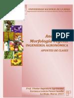 APUNTES_ANAT_Y_MORF_2015_.pdf