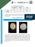 Resultados (Microbiología)