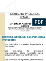 TerceraSemana_PrincipiosProcesales_I.ppt