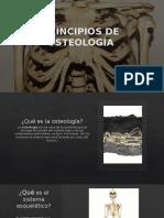 Principios de Osteología Final