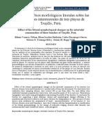 Efecto de cambios morfológicos.pdf