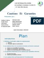 Cautions   Et   Garanties.pptx