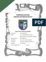 POLIGONAL-ABIERTA.docx