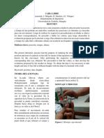 Caida libre.pdf