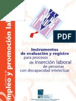 ROJO_InstrumentosEvaluacionRegistro