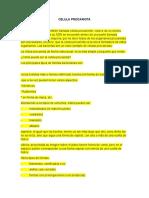 celula procariota correccion (2)