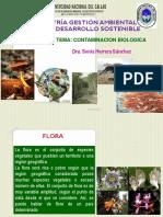 06-CONTAMINACION DE LA FLORA Y FAUNA-2016[1].pdf