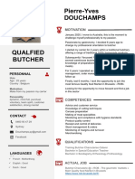 PY-CV-Boucher.pdf