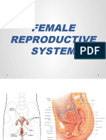 Female-Reproductive-System-2018.pptx
