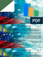 Encuesta Meganalisis Marzo 2020 (Informe Público)
