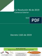 Presentación DIAN Decreto 1165 y Resolución 046 2019.pdf
