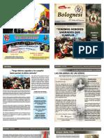 revista bolognesi.pdf