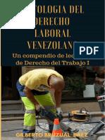 LIBRO ANTOLOGÍA DEL DERECHO LABORAL VENEZOLANO.pdf
