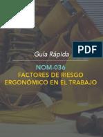 Guia_NOM-036.pdf