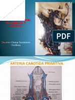 ARTERIAS.pptx