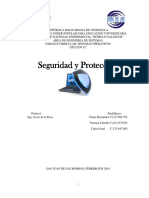Seguridad y Proteccion trabajocompleto