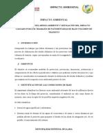 01. IMPACTO AMBIENTAL SAN LORENZO