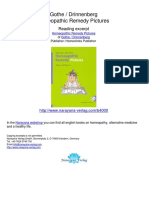 Homeopathic-Remedy-Pictures-Gothe-Drinnenberg.04000_1.pdf